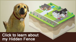 Pet Stop® Hidden Fence Video